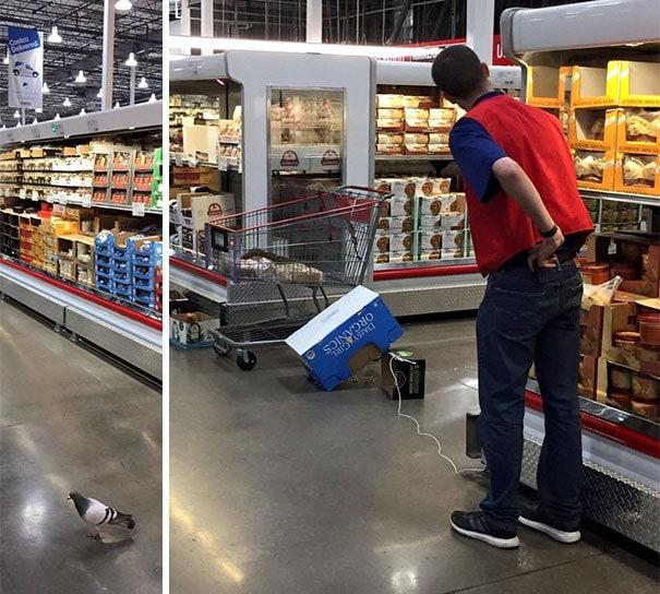 funny-supermarket-people-35-5b599021112fa__605.jpg