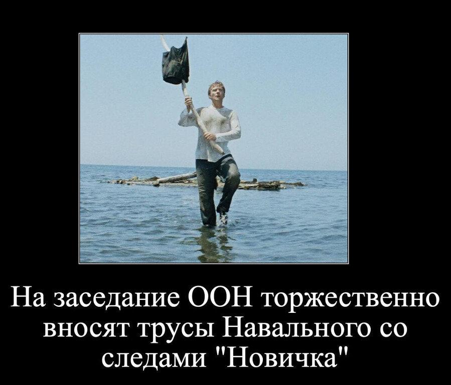 навального трусы.jpg